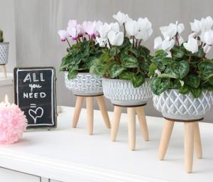 Base de cemento grabada con patas para decoración floral, al mayor