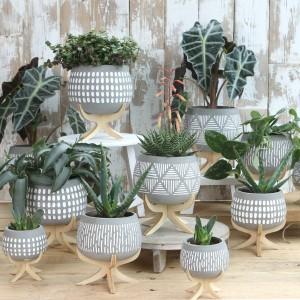 Macetas de Cemento y Madera para plantas - cactus